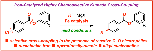 Iron-catalyzed Kumada cross-coupling