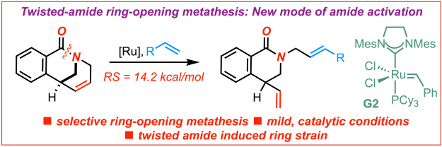 Twisted amide olefin metathesis