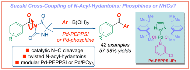 Suzuki cross-coupling of amides N-acyl-hydantoins