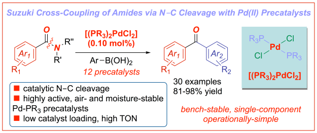 Suzuki cross-coupling of amides-palladium precatalysts