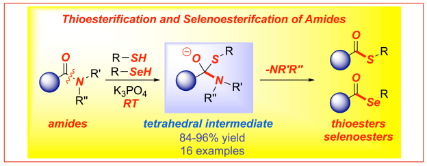 Thioesterification and selenoesterification of amides